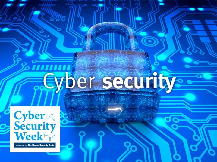 NL cybersecure: a safe place to do business?